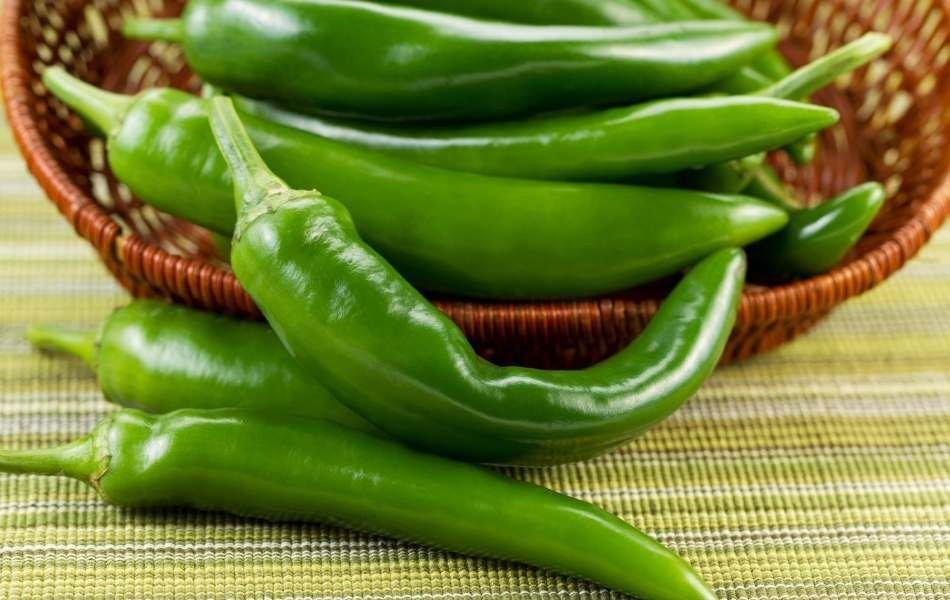 Korean Green Peppers