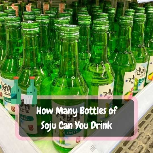how many bottles of soju can you drink